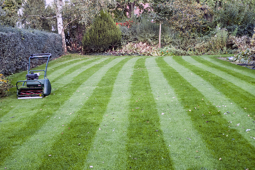 Rasen mähen ist ein wunderbares Hobby